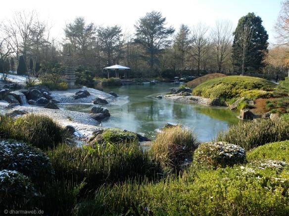 http://snug-harbor.org/botanical-garden/new-york-chinese-scholars ...